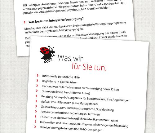 Innenseite des Flyers mit Käfer, großen Überschriften und übersichtlichen Texten