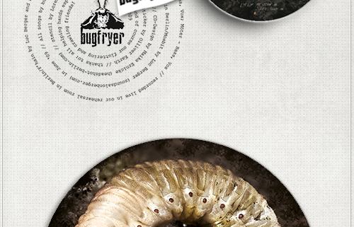 Bildbearbeitung eines Cock Chafer Grubs für das Mini-Album von Bugfryer