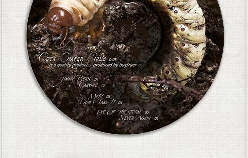 Design des CD-Labels