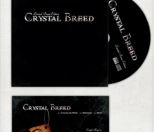 Design für die Promotion - CD