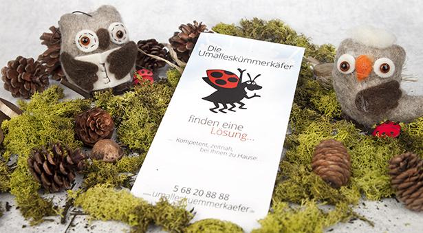 individuelle Werbeflyer mit Käfer der ABZ Sozialstation