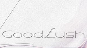 individuelles Logotype - Design